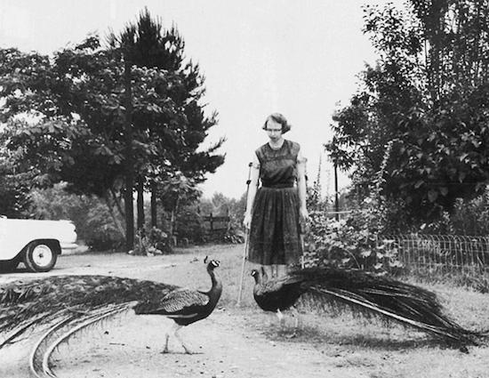 an overview of the many literary works by flannery oconnor Mary flannery o'connor (march 25, 1925 – august 3, 1964) was an american  writer and essayist she wrote two novels and thirty-two short stories, as well as a  number of  lytle, for many years editor of the sewanee review, was one of the  earliest  many of o'connor's short stories have been re-published in major.