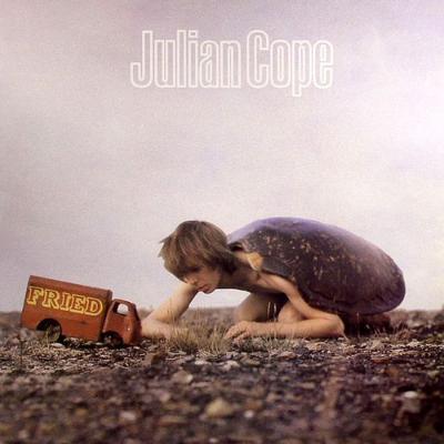 Julian_cope_1411474502_resize_460x400