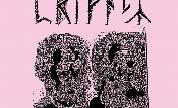 Raspberry_bulbs_-_privacy_1415639268_crop_178x108