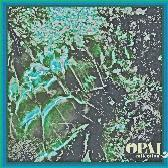 Maston_-_opal_cover_1418731885_crop_168x168