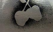 Silver_apples_1422213398_crop_178x108