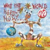 Public Image Ltd. What The World Needs Now... pack shot