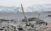 Whale_bones_near_port_lockroy_1443387981_crop_178x108