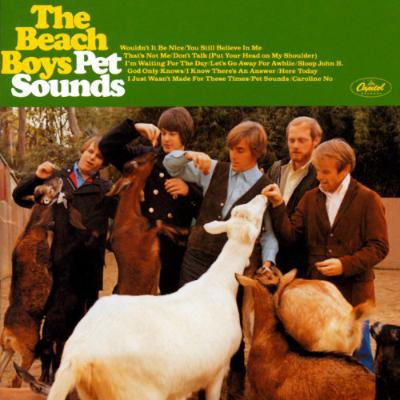 The_beach_boys_1446570494_resize_460x400