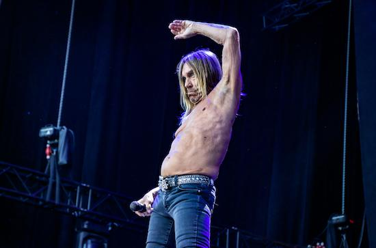 The quietus features three songs no flash avatars for Iggy pop t shirt amazon