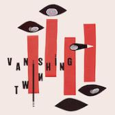Vanishing Twin Choose Your Own Adventure pack shot