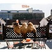 Wilco Wilco (The Album)  pack shot