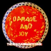 The Jesus & Mary Chain Damage And Joy pack shot