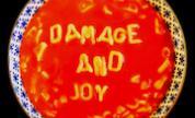 Damage-and-joy-cover-art-2016-billboard-1240_1490223009_crop_178x108