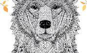 Bear_1501156485_crop_178x108