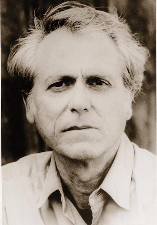 white noise don delillo essay Three decades on from its first publication, don delillo's white noise is as relevant as ever, argues robert bright in this penetrating and insightful essay in 1985, american writer don delillo published his ninth novel, white noise, a tour through the media-saturated, information-glutted, consumer.