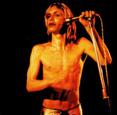 Search___destroy_-_iggy___the_stooges__1529431291_resize_460x400