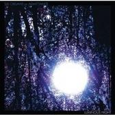 Six Organs Of Admittance Luminous Night pack shot