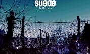 Suede_1538739717_crop_178x108
