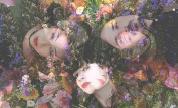 Thestargazerlilies-photoaimeeherringryaneditedbycrystaljoytuliszewski-1500x1069_1573552642_crop_178x108