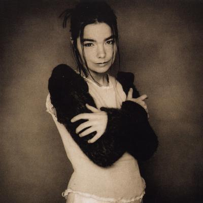 Bjork_-_human_behaviour_1581968615_resize_460x400