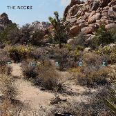The Necks Three pack shot