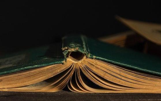 Book-4611273_640_1589474761_crop_558x350