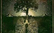 Botanist_photosynthesis_1604156503_crop_178x108
