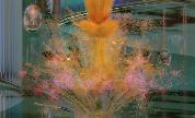 Timedance-cleyra-compilation_1605802651_crop_178x108
