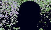 Mxlx_1618560797_crop_178x108