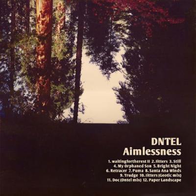 Dntel_-_aimlessness_1623082186_resize_460x400