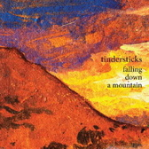 Tindersticks Falling Down A Mountain pack shot