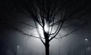 I_am_kloot_sky_at_night_1279041319_crop_178x108