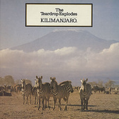 The Teardrop Explodes Kilimanjaro (reissue) pack shot