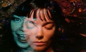 Bjrk__hyperballad__michael_gondry__1299542596_crop_178x108