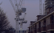 Crane_wide_jpeg_real_1304683035_crop_178x108