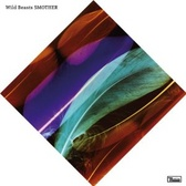 Wild Beasts Smother  pack shot