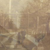 Ezekiel Honig Folding In On Itself  pack shot