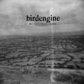 Birdengine The Crooked Mile pack shot