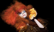 Bjork_press_throw_lores_1331140672_crop_178x108