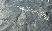 Young_1337010558_crop_178x108