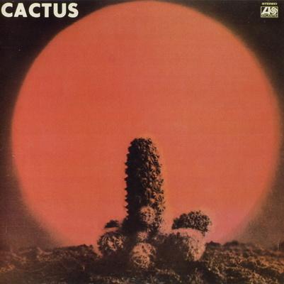 Cactus_1339318450_resize_460x400