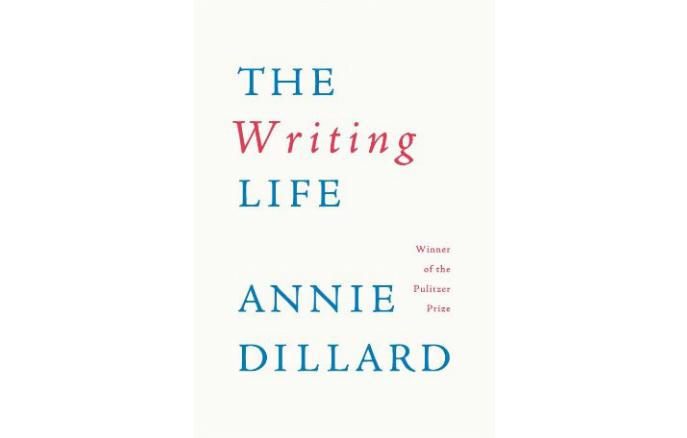 Write my annie dillard essay seeing