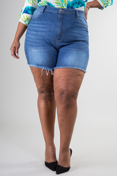 Plus Size High Waist Jean Shorts