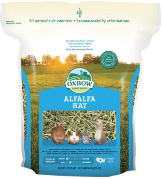 Feeding Rabbits Alfalfa Hay