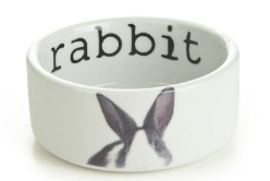 rabbit water bowl