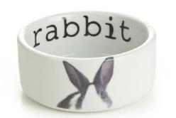 rabbit water bowl