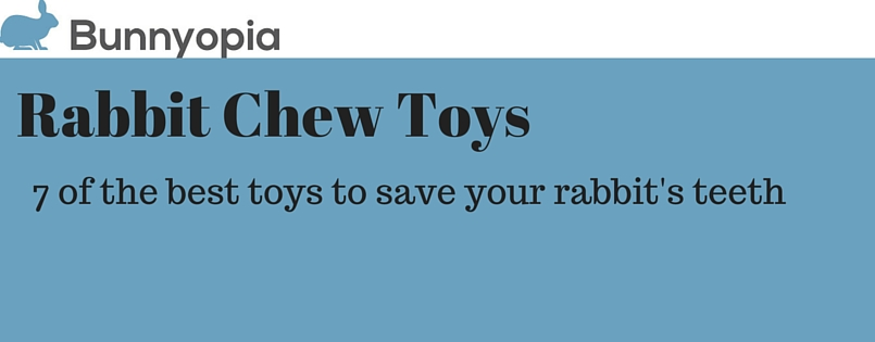 Rabbit Chew Toys