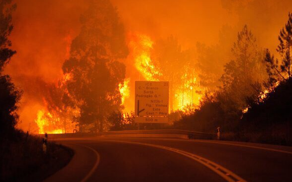 Image result for Portugal Forest Fire Traps Drivers, Killing at Least 62 People