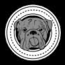 Bostonbulldogs