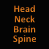 Headneckbrainspine