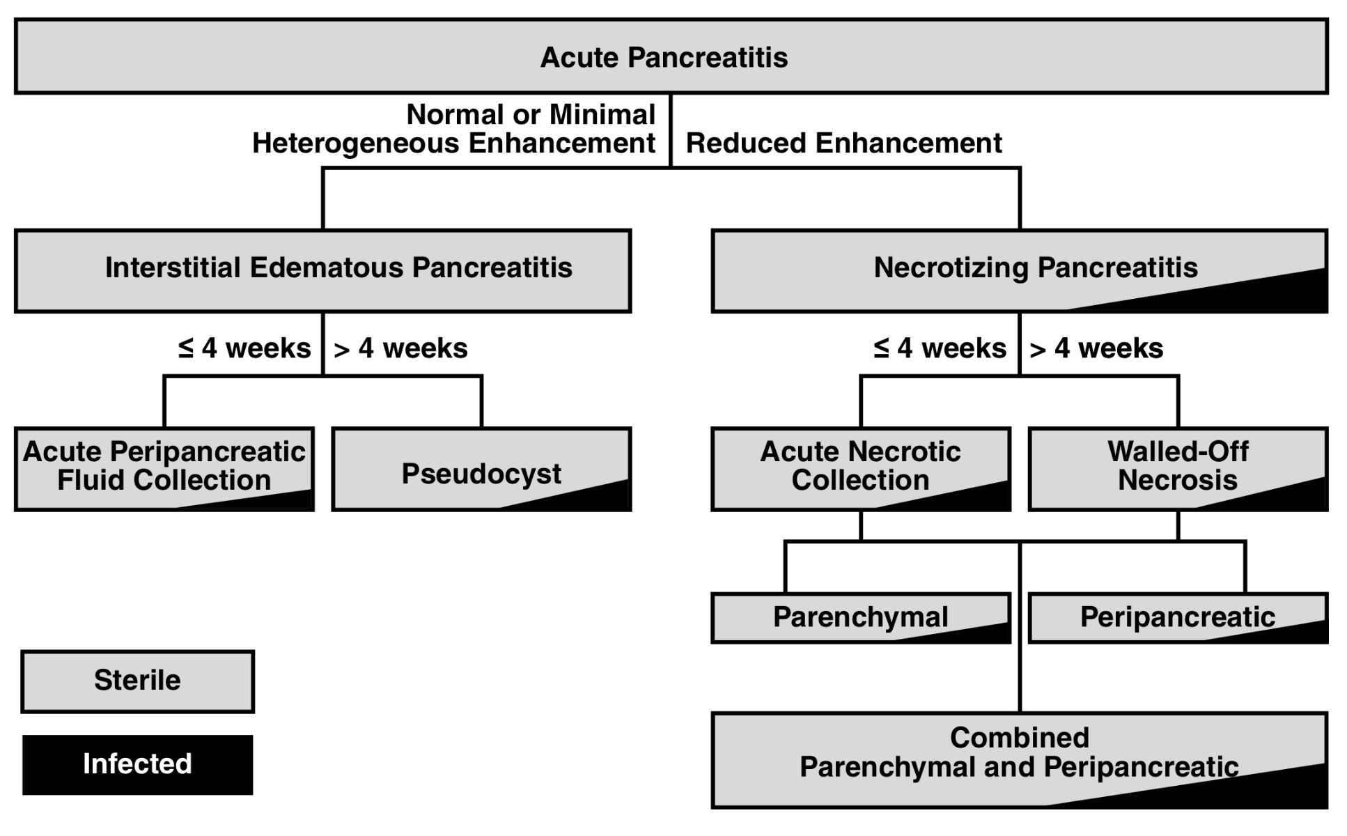 Pancreatitis classification