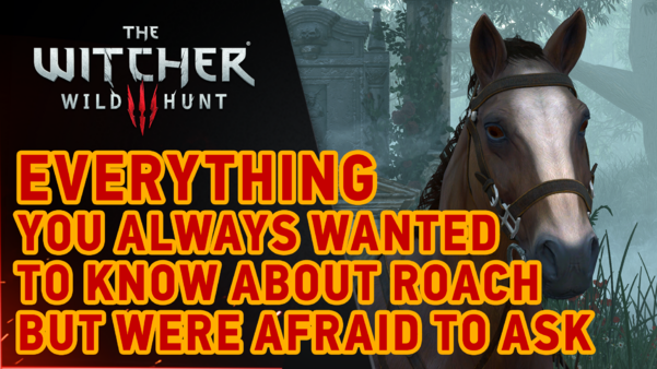The Witcher III: Wild Hunt - Roach