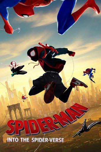 SpiderManITSV