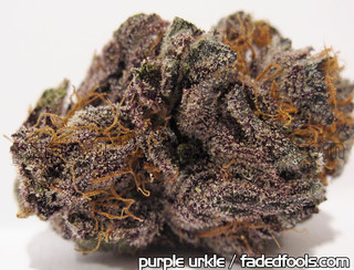 What Does Purp Weed Look Like